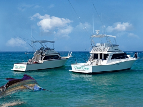 Taco Fishing Boats