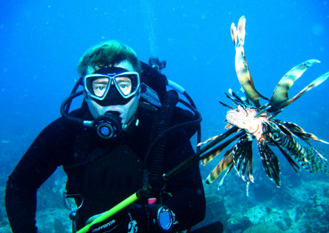 Lion Fish removal